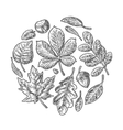 Set leaf vintage engraved vector image
