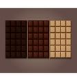 Chocolate bars icon vector image