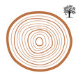cross-section of a tree abstract ring vector image