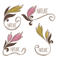 floral collection vector image