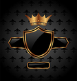 ornate heraldic shield with crown - vector image vector image