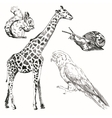 Black sketch animals set on a background vector image
