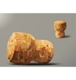 two champagne cork lying and standing vector image