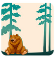 Bear and trees vector image vector image