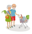 Senior woman and man shopping for groceries vector image