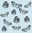 Pattern with butterfly with transparent wings vector image
