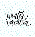 Hand drawn lettering Winter vacation vector image