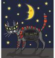 night cat vector image