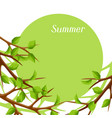 summer card with branches of tree and green leaves vector image