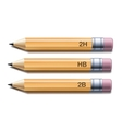 Yellow pencils vector image
