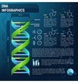 DNA for science infographics vector image