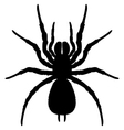 Silhouette spider vector image