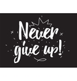 Never give up inscription Greeting card with vector image