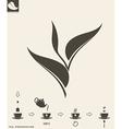 Tea preparation Leaf vector image vector image