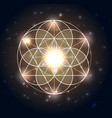 sacred geometry abstract geometric shapes on a vector image
