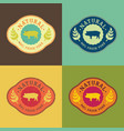 natural fresh pork food set vector image