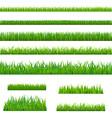 Big Green Grass vector image vector image