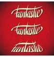 Fantastic greetings hand lettering set vector image vector image