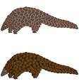 The Pangolin vintage engraved vector image