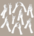 woman hands set vector image