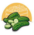 fresh cucumbers vector image vector image