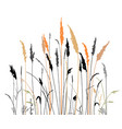 silhouette of the steppe grass vector image