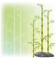 A bamboo and stone vector image