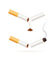 broken realistic cigarette quit smoking vector image