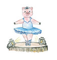 pig ballerina on the stage drawn in watercolour vector image