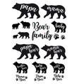 Mama bear papa bear baby bear set vector image