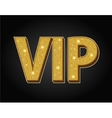 Very important person - VIP icon vector image
