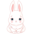 White Bunny vector image vector image