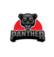 black panther head logo vector image