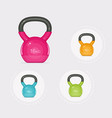 kettlebells equipment vector image
