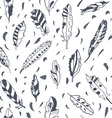 Graphic feathers seamless pattern ornate design vector image