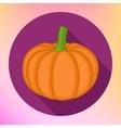 Pumpkin flat icon style vector image