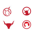 red bull taurus logo template icon vector image