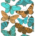 colorful background with butterflies vector image