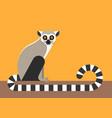 sitting lemur vector image