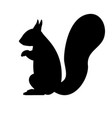 black silhouette of a squirrel vector image