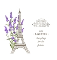 Eiffel tower over white vector image