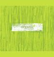 organic nature friendly eco bamboo background bio vector image