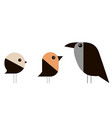 sparrow bullfinch and crow in a minimalist style vector image