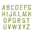 Foliage Decorative Green Font vector image