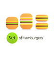 Set of Hamburgers vector image