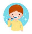cute boy brushing his teeth vector image vector image
