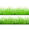 Green Grass Borders Set vector image