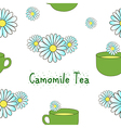 Seamless pattern camomile tea vector image
