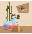 spa beauty and health aroma therapy bamboo vector image