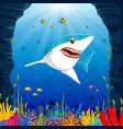 cartoon shark under the sea vector image